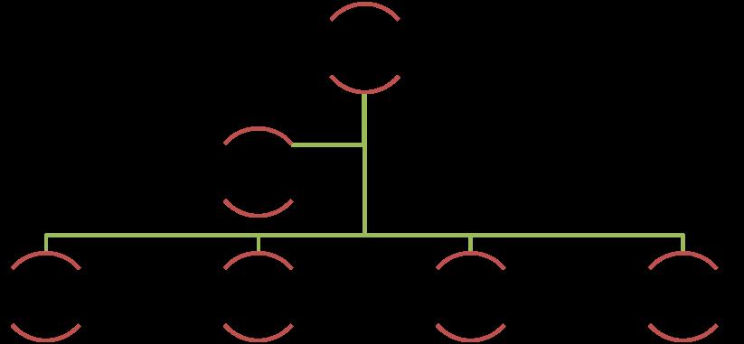 Organograma da Equipe Organizadora